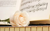 ☺ Piano music and a rose...