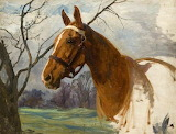 """Chestnut Horse- unfinished"" by Lucy Kemp-Welch"