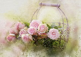 Watercolor-roses-and-basket