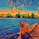 abstract dog by the water
