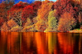 At The Lake In The Fall