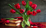 Red-tulips-217984