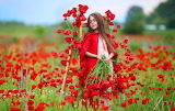 red riding hood in flower field
