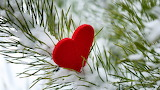 ^ Heart in the snow