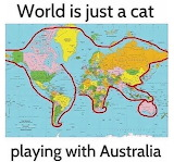 World is just a cat..