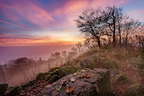 Germany Morning Sunrises and sunsets Stones Trees 589248 1280x85