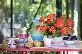 A Summertime Table