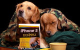 Dogs Book...