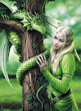 dragon with elf