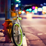 Bicycle in the Street...