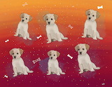 Puppy, Repeating