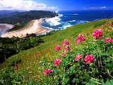 CASCADE HEAD, OREGON