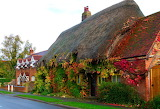 ^ Thatched roof cottage in England