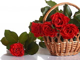 ☺ Red roses...