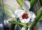 ^ White Orchid watercolor ~ Marney Ward