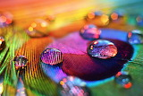 Rainbow colors by rustmouth-d3ab0di