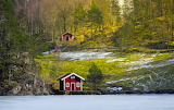 Early Spring Norway - Photo from Piqsels id-zkslj