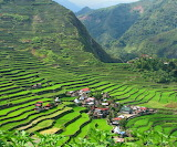 Philippines, Terraced Rice Fields