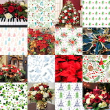 Christmas Flower & Plant Collage