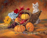 Beautiful-Thanksgiving-Cat-with-Pumkin-Painting
