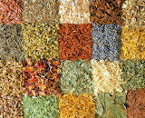 Spices Squared