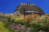 Rosegarden - Photo from Pikrepo.com