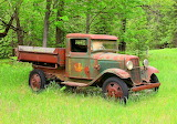 Old Forestry Truck