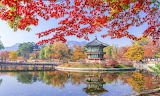 South Korea, Gyeongbokgung in autumn