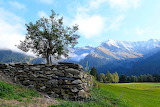Stone Wall - Photo id-5292813 Pixabay by Iso Tuor