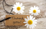 Thank you plate with white sunflowers