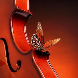 ☺ The butterfly who loved music...