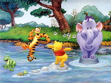 The pooh in water