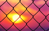 Fence Prison mood sunset pink colors 3840x2458