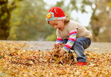 Autumn-girl gathering leaves